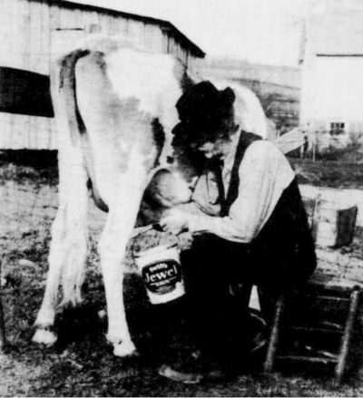 "Joe Blackard, milking his cow and ""Advertising Jewel Lard."" Front page photo September 1986."