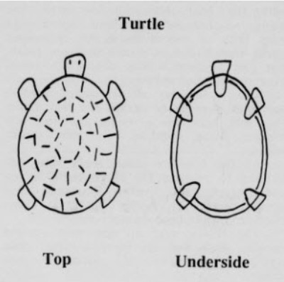How to make Turtle Christmas Decorations