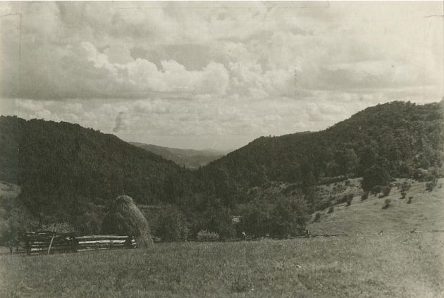 Image shows Edward's Store, as seen in the view looking down Rock Castle Gorge. There is an open field with a wooden fence, trees, and mountains in the background. Toward the center of the photograph a roof top is visible, and a straw hat can also be seen. Image taken by Albert S. Burns in July of 1936. Image taken at milepost 168.7 in section 1S of the Blue Ridge Parkway.